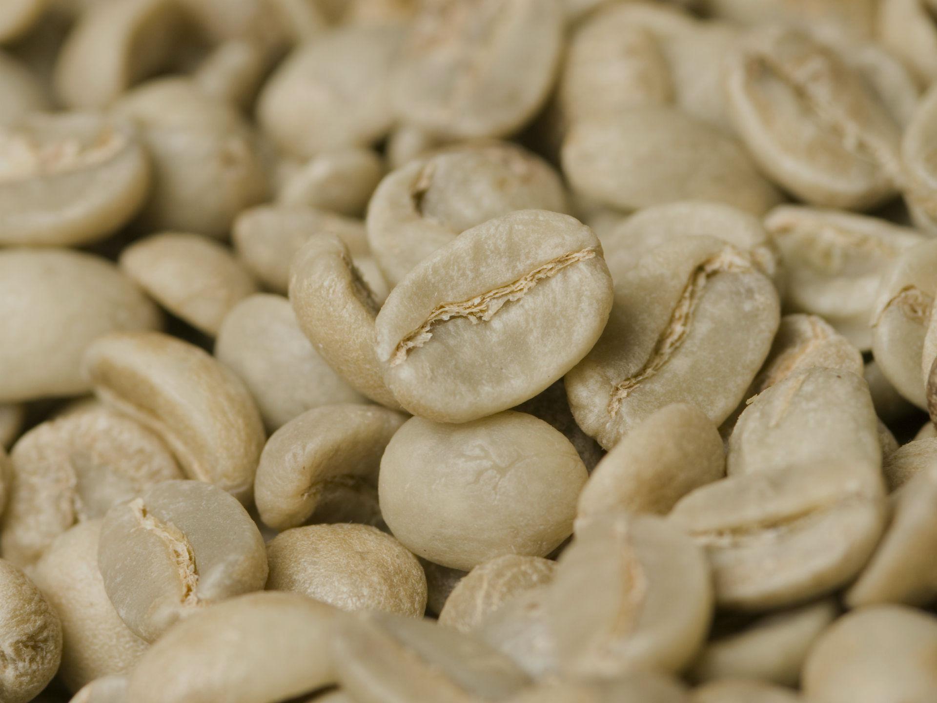 THE COFFEE ALCHEMIST